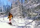snowshoe1--751796